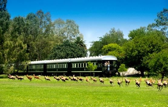Уникальное путешествие на ретро поезде Ровос от Кейптауна до Водопада Виктория и сафари в Национальном Парке Чобе, Ботсвана